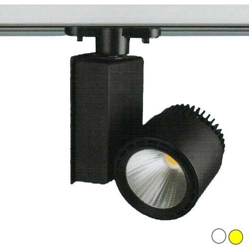 600_den-spotlight-fr-137